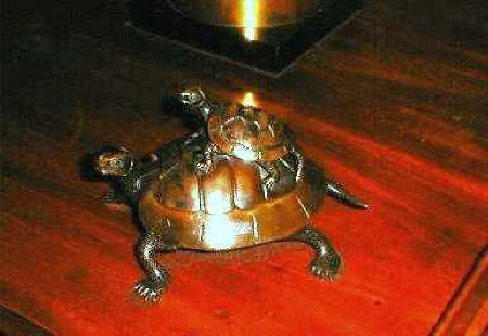 Tortoise with a Baby Tortoise on its back