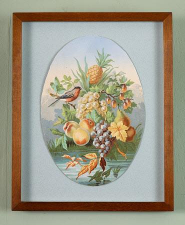 Fruit with Bullfinch