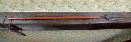 Eel spear