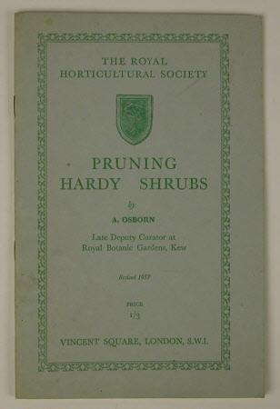 Pruning hardy shrubs