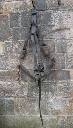 Horse breeching