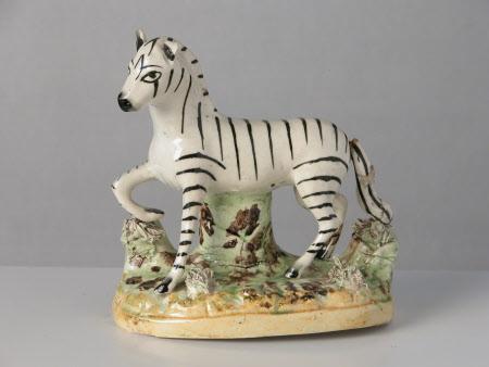 Zebra facing left