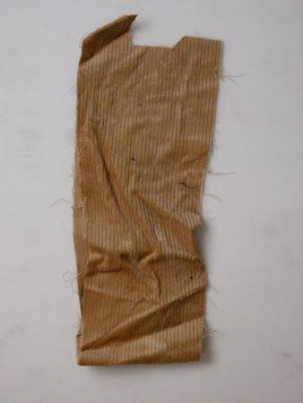 Corduroy fragment