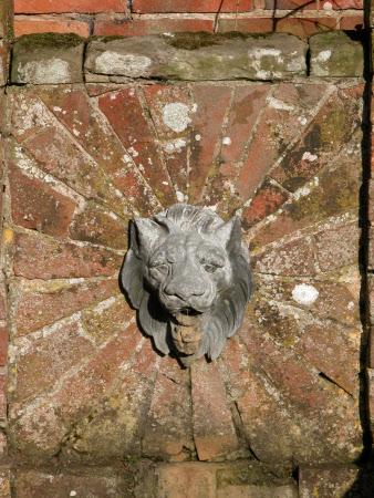 Lion's Head Fountain Spout