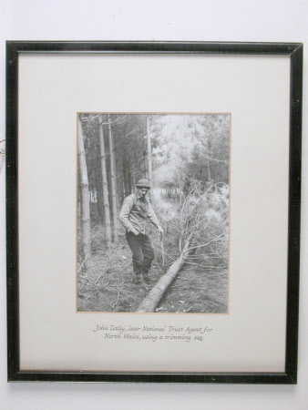 John Tetley using a trimming axe, Dudmaston Estate, Shropshire
