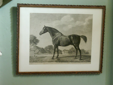 'Sweetbrier' (after George Stubbs RA)