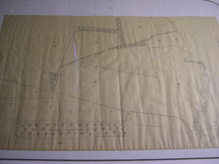 Map/plan of a field layout adjacent to Peascliff Plantation part of the Belton Estate, Lincolnshire.
