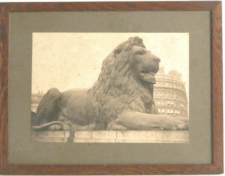 Lion on the Nelson Monument, Trafalgar Square, London sculpted by Landseer