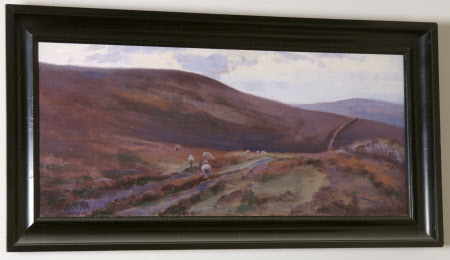 'Evening': Countisbury Common, Exmoor