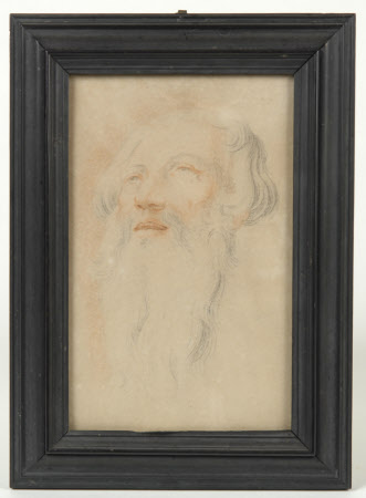 Study for the Head of an Old Man