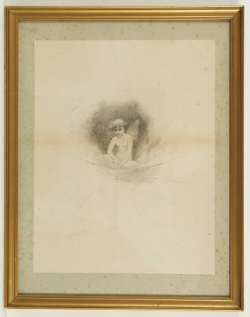 A child fairy with wings sitting in a cobweb