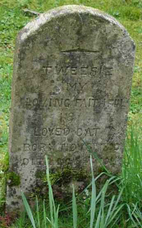 Gravestone for a pet Cat called 'Tweesie'