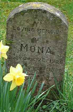 Gravestone for a pet Animal called 'Mona'