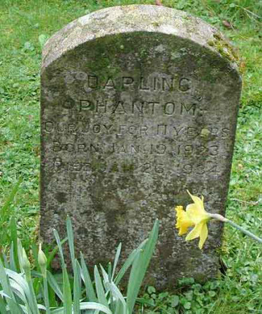 Gravestone for a pet animal called 'Phantom'