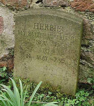 Gravestone for a pet dog called 'Herbie'.