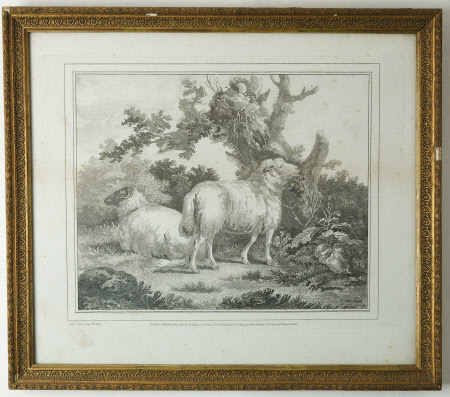 Two sheep under a tree (after George Morland)