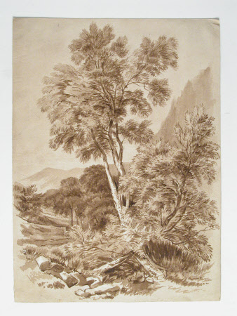 Landscape with trees and mountains