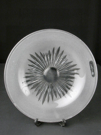 Ice plate