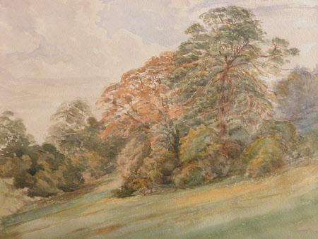View of Killerton, Devon