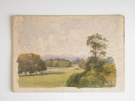 The grounds of Killerton House, Devon