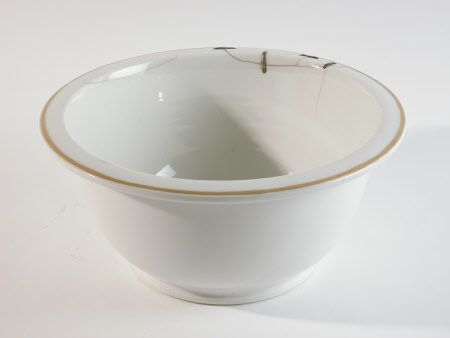 Ice pail liner
