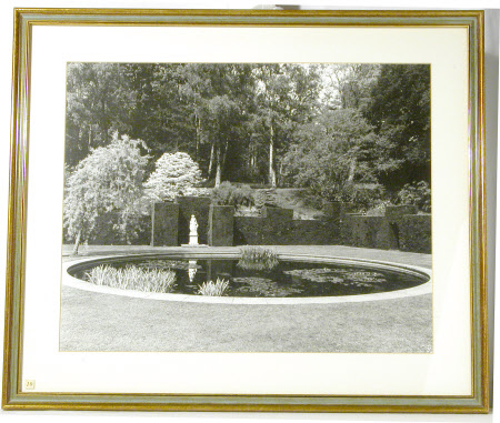 The Lily Pond, Knightshayes Court, Devon
