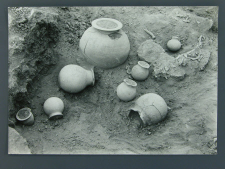 Unearthed pottery urns/jars in an archaelogical excavation