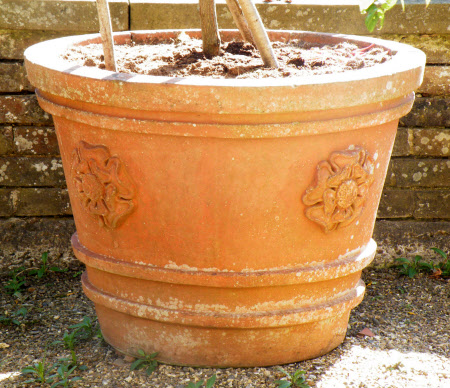 Terracotta pot with Tudor rose relief