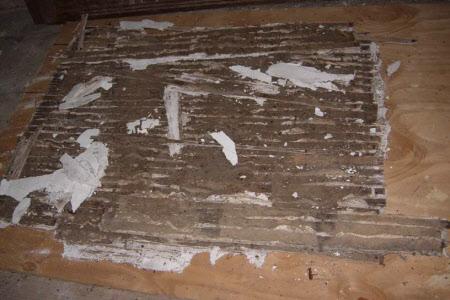 Ceiling plasterwork