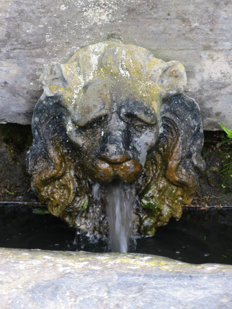 Fountain head mask