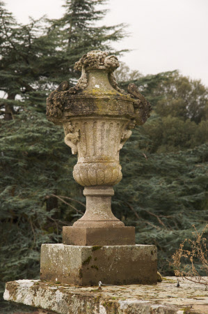 Fluted urn draped with grapes