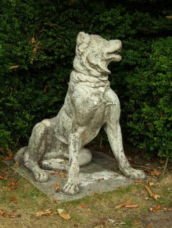 The Alcibiades Dog
