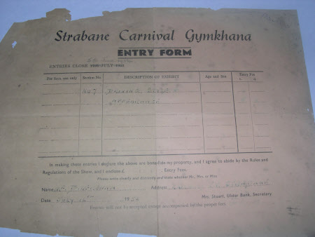 Gymkhana entry form