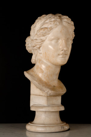 Head of Aphrodite (The Leconfield Head)