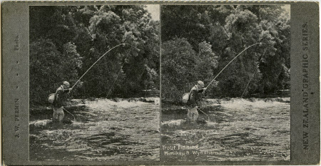 Trout Fishing, Mimikau R. Wyndham