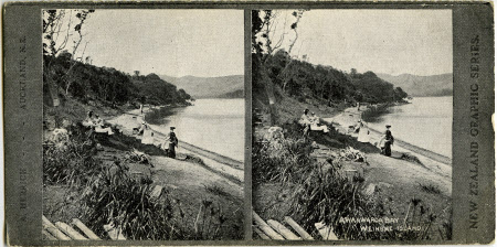 Awaawaroa Bay Weineke Island