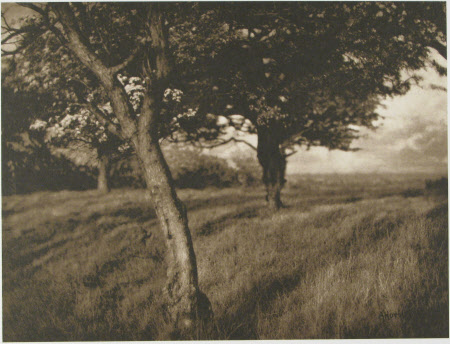 Alfred Horsley Hinton - Beyond - 1903