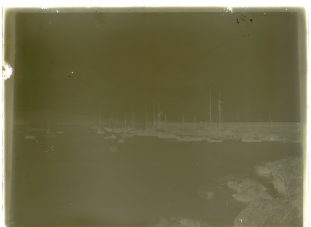 Monochrome negative