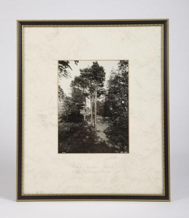 Rock Garden Wood from Bishops Rock 1930
