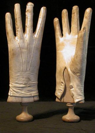 Glove tree