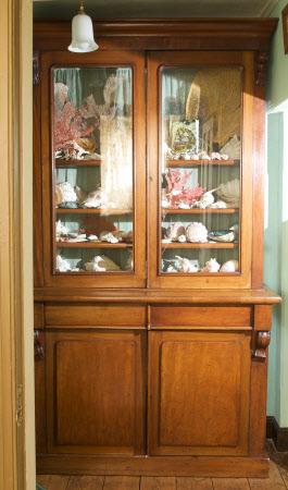 Bookcase cabinet