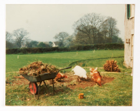 View of A La Ronde, Devon, with wheelbarrow and chickens