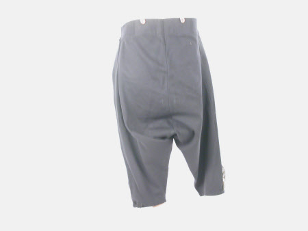Court suit breeches