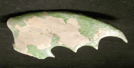Dragon wing fragment