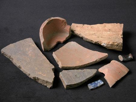 Pottery sherd