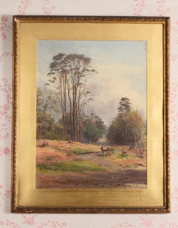Dunham Massey Park: 1887
