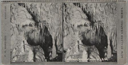 The Canopy Waitomo Caves, NZ