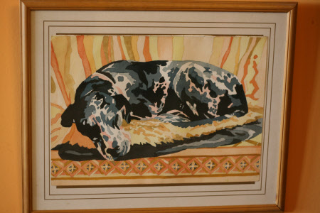 One of the Great Dane Dogs belonging to Robert Parsons.