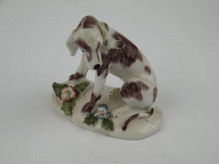 Model animal