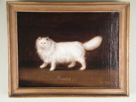 Psyche A White Persian Cat 1449066 National Trust Collections